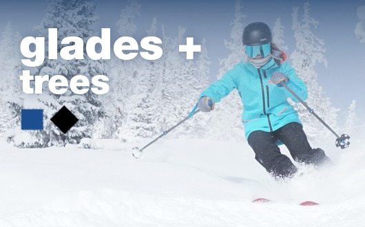 Glades + Trees (Ages 16+)Jan 29, 30, 31 & Feb 26, 27, 28