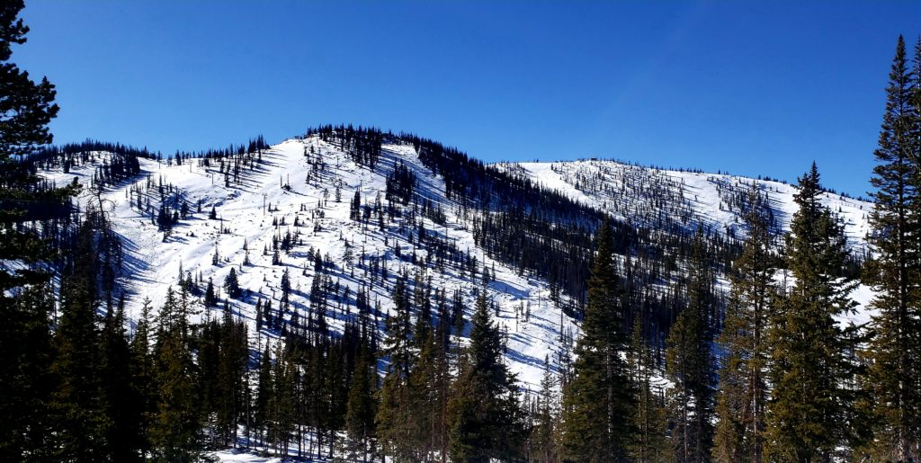 Snow covered slopes